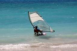 a windsurfer off the coast of Barbados