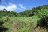 Dominica 200 acres of paradise 10