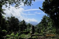Dominica 200 acres of paradise 12