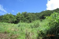 Dominica 200 acres of paradise 4