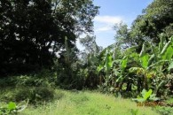 Dominica 200 acres of paradise 5