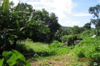 Dominica 200 acres of paradise 7