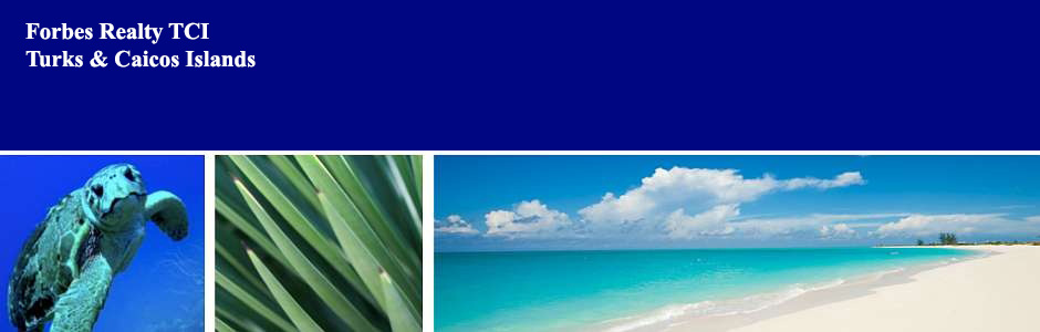 Header for Forbes Realty TCI