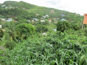 Sloping Lot at Corinth for sale COR 003 L