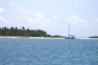 Island-Real-Estate-dif_ariel_with_arrrow_800_600 (6)