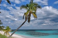 Island-Real-Estate-dif_ariel_with_arrrow_800_600 (7)