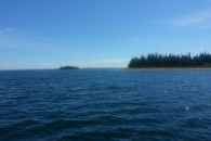 Lighthouse Island Cape Breton_2