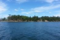 Cranberry Island Cape Breton_3