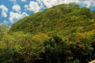 Mountain Road Saba_JCP-4