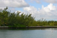 Bahamas canal land - view from water