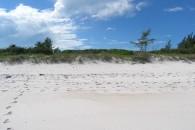 Eleuthera Land on Pink Beach