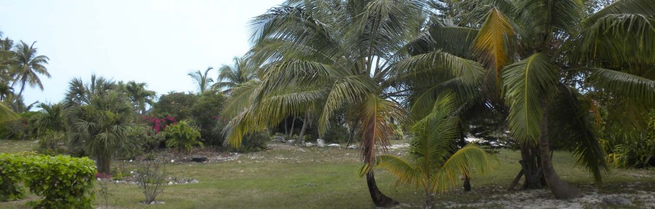 island lots in the bahamas