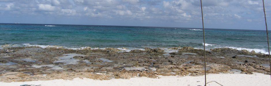 white sand on beach shoreline