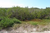 overland view of land for sale