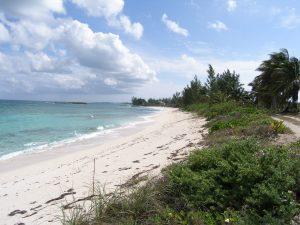 alternate viewof beach coastline
