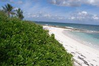 reverse angle view of hte beach coastline