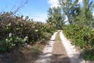 road to waterfront land lot