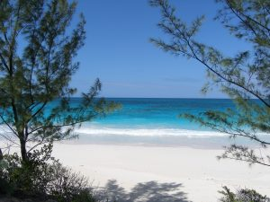 beachview from the land