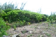 Eleuthera Land for Sale 28117_10
