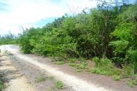 Eleuthera Land for Sale 28117_8
