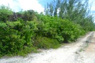 Eleuthera Land for Sale 28117_9