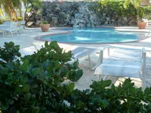 Pool to swim in at St Kitts Condo