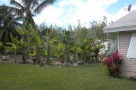 garden (002)
