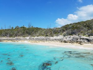 Lot for Sale Rose Island 1