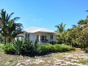 Conch Shell Cottage
