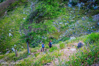 Spring Bay Land for Sale Saba Island_7