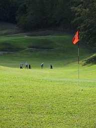 Golf20MQ