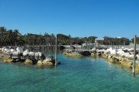 land in the bahamas (1)
