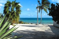 land in the bahamas (5)