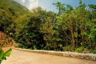 Mountain Road Saba_JCP-1