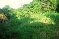 Saba Land for sale - 02