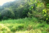 Saba Land for sale - 04