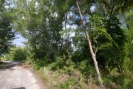 Bahamas canal land -  land access