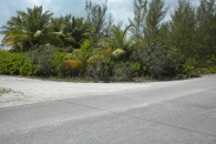 added photo of the lot 3 Treasure Cay
