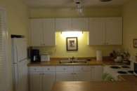 direct photo of kitchen and counter