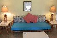 blue sofa in the living room with patterened back