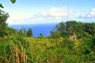 The Mountain Land Saba