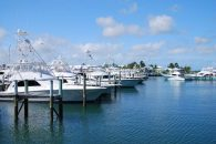 TCB-Marina-Boats-w