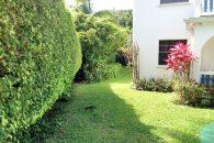 St-Lucia-Homes---Blue-Skies--Yard-2
