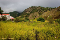 Spring Bay Land for Sale Saba Island_4