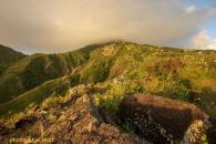 Spring Bay Land for Sale Saba Island_5