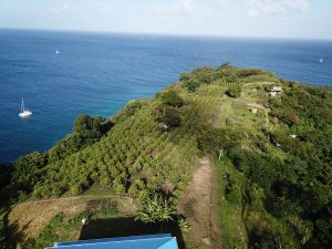 Aerial view of land 2