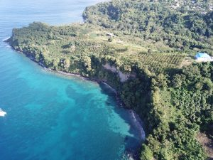 Aerial view of Shoreside of property