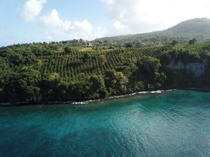 Grenada Agricultural Development Opportunity - Reduced!